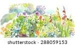 Garden. Watercolor.