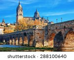 Salamanca Cathedral. Castile...