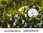 time is ticking in the grass | Shutterstock . vector #288309449