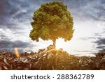tree grows between mountains of ... | Shutterstock . vector #288362789