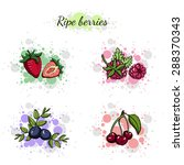 set of hand drawn colorful... | Shutterstock .eps vector #288370343