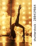 pole dancing | Shutterstock . vector #288419864