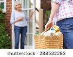 person doing shopping for... | Shutterstock . vector #288532283