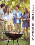 happy friends in the park... | Shutterstock . vector #288534173