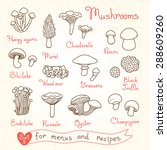 set drawings of mushrooms for... | Shutterstock .eps vector #288609260
