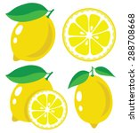 Vector Lemon. Fresh Lemon...