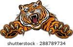 tiger jump   Shutterstock .eps vector #288789734
