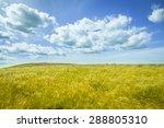 beautiful prairie landscape... | Shutterstock . vector #288805310
