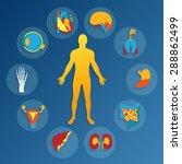 medical background.human... | Shutterstock . vector #288862499