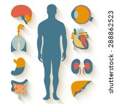 flat design icons for medical... | Shutterstock . vector #288862523