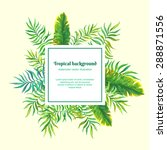 palm leaves. vector background | Shutterstock .eps vector #288871556