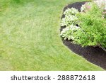 Mulched Flowerbed With...