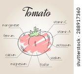 vector illustration of... | Shutterstock .eps vector #288917360