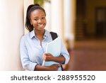 attractive african american... | Shutterstock . vector #288955520
