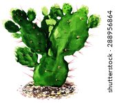cactus isolated  watercolor... | Shutterstock . vector #288956864
