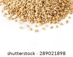 wheat isolated on white... | Shutterstock . vector #289021898