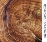 wood texture   Shutterstock . vector #289022060