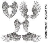 angel or bird wings abstract...   Shutterstock .eps vector #289035593