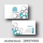 modern business card vector... | Shutterstock .eps vector #289074500
