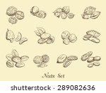set of nuts on a neutral... | Shutterstock . vector #289082636