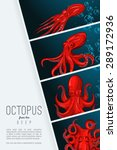 octopus in deep. color vector... | Shutterstock .eps vector #289172936