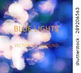 natural blurred background made ... | Shutterstock .eps vector #289206563