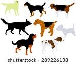 dogs vector silhouette | Shutterstock .eps vector #289226138