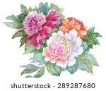 summer garden roses flowers... | Shutterstock .eps vector #289287680