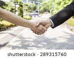 the handshake to businessman | Shutterstock . vector #289315760