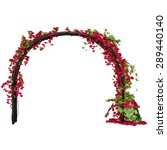 Arched Pergola With Red Rose...