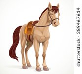 beige horse saddled and in... | Shutterstock .eps vector #289467614
