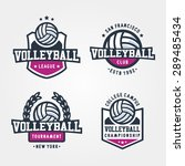 Set Of Volleyball Badge Logo...