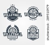 set of volleyball badge logos.... | Shutterstock .eps vector #289510979