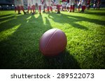 american football on stadium... | Shutterstock . vector #289522073
