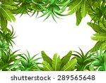 tropical jungle. frame | Shutterstock .eps vector #289565648