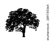 beautiful vector tree... | Shutterstock .eps vector #289735364