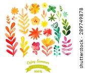 vector watercolor flowers... | Shutterstock .eps vector #289749878