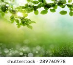 natural green background with... | Shutterstock . vector #289760978