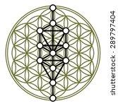 kabbalah  12 sephiroth  tree of ...   Shutterstock .eps vector #289797404