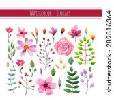 watercolor floral collection... | Shutterstock .eps vector #289816364