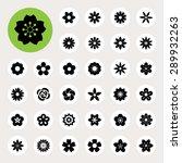 set of flower icons... | Shutterstock .eps vector #289932263