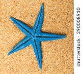 starfish  shell  beach. | Shutterstock . vector #290008910