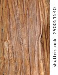 Pacific Red Cedar Bark