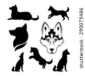 husky icons and silhouettes.... | Shutterstock .eps vector #290075486