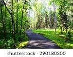 Asphalt Road Passes Through Th...