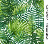watercolor tropical palm leaves ... | Shutterstock .eps vector #290260598