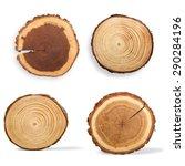 tree ring  log  wood. | Shutterstock . vector #290284196