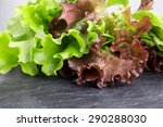 Different Varieties Of Lettuce...