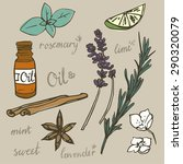 aromatherapy  spa and wellness... | Shutterstock .eps vector #290320079