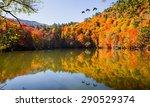 Stock photo autumn landscape in seven lakes yedigoller park bolu turkey 290529374